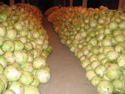 Продам овощи: Капусту   картофель лук свеклу
